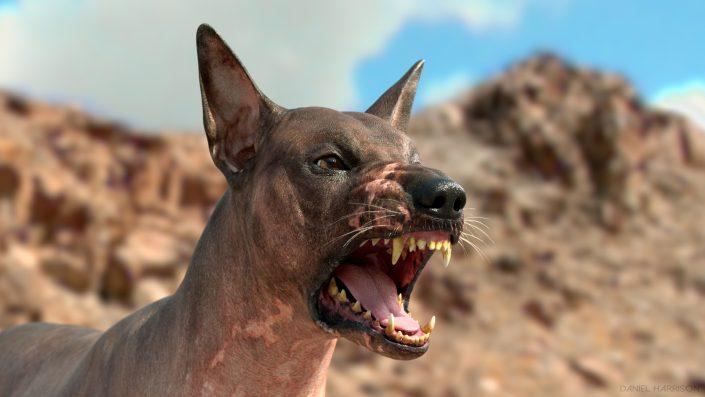Peruvian Dog VFX CG 3D , Dog 3D, Dog CG